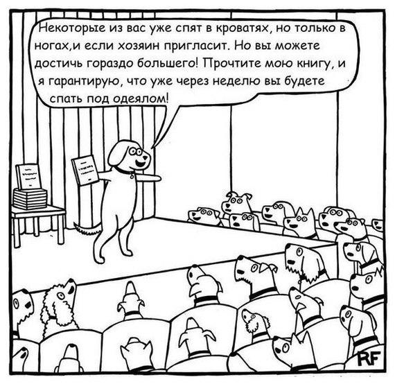 trening dlya sobak))